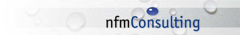 nfm Consulting